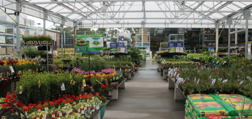 The 38,000 square foot gardening center is the largest on the Outer Banks.