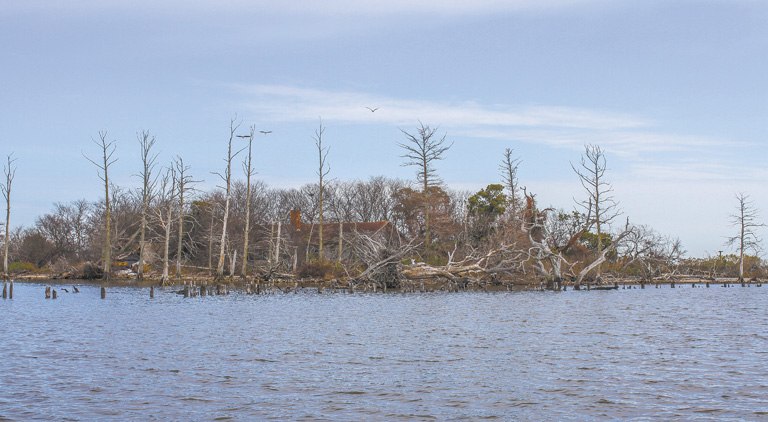 Monkey Island North Carolina