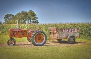 One of the tractors on display at Morris Farm Market.