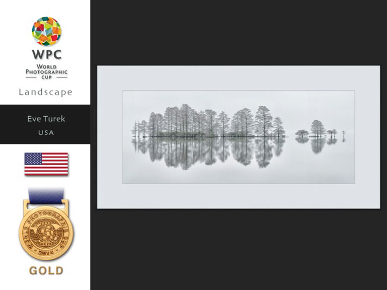 Eve Turek's Image, Meditation, with World Photography Cup Gold Medal.