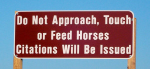 Warning sign about the Corolla Wild Horses.