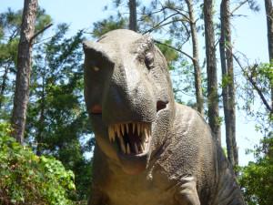 Tyrannosaurus Rex. The last stop on the Tyrannosaurus Trek.