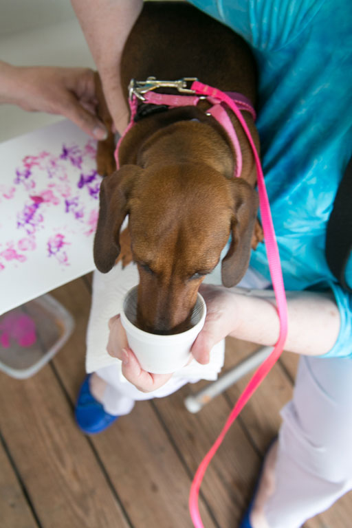 Sophie Bell samples a Doggie Daiquiri.