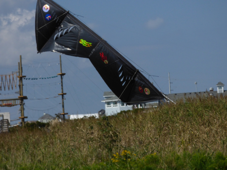 Garbage bag quad line kite by Art St. Pierre.
