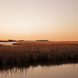 currituck sound entrep