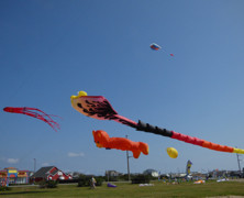 Kites Paint the Sky in Nags Head