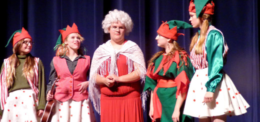 Mrs. Claus and elves planning a Christmas surprise birthday for Santa.